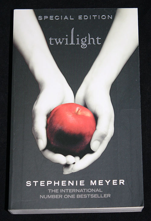 essay on twilight book